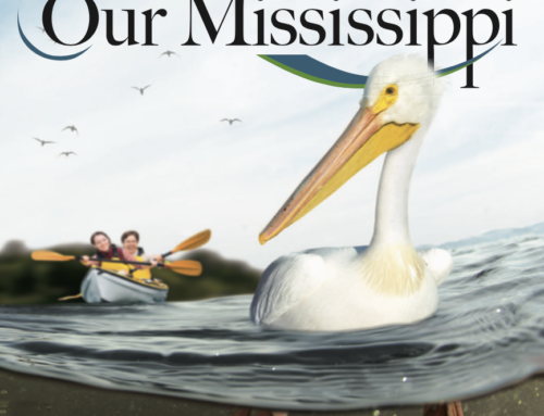 Our Mississippi: Educational Activities about the Upper Mississippi River